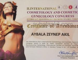 Cosmetic-Gynecology