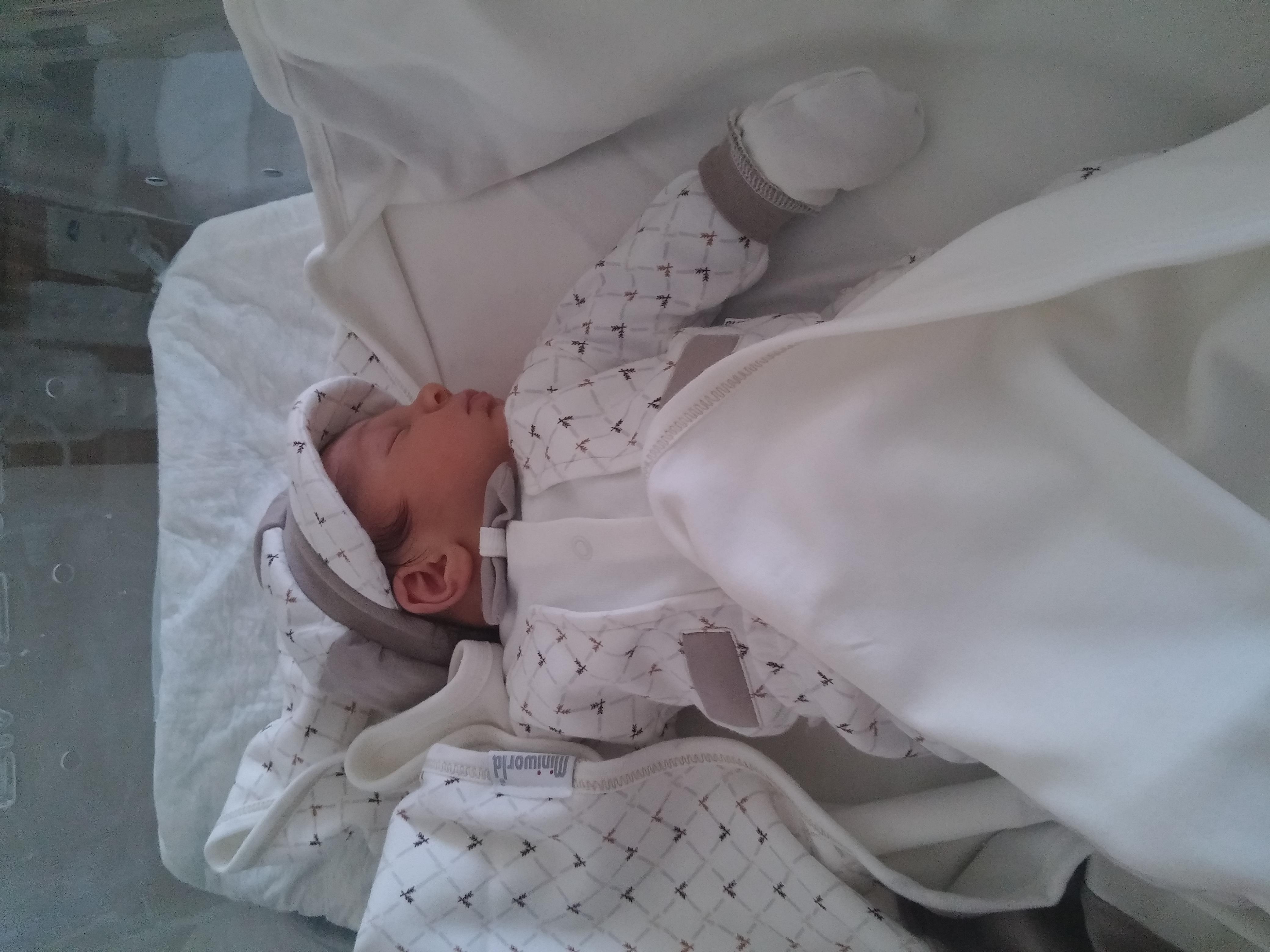 Yeni Bir Doğum Hikayesi – Nilüfer Pala