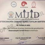 Histeroskopik Cerrahi Kursu MIJID (Minimal İnvaziv Jinekolojik Derneği)