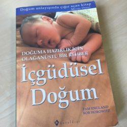 İçgüdüsel Doğum, Pam England – Rob Horowitz