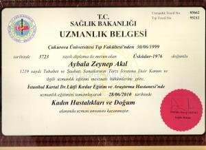 diploma-002