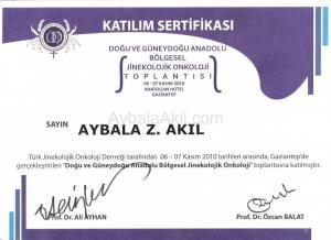 sertifika-013